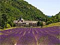 Vacances en région Provence-Alpes-Côte d'Azur